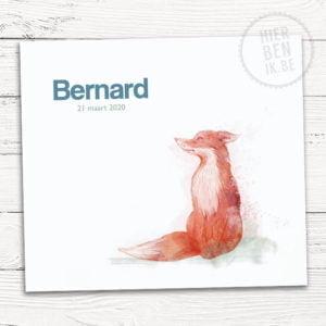 Het geboortekaartje Bernard is voorzien van een strak design en heeft een mooie aquarel tekening van een schattig vosje.