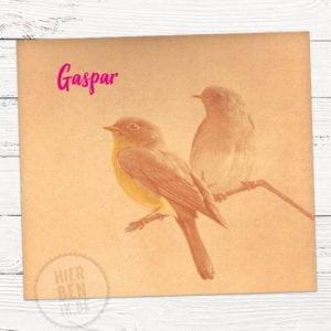 Geboortekaartje op maat retro vogels op kraftpapier en fluo naam