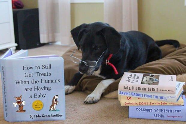 10 originele zwangerschapsaankondigingen - Grappig, schattig, ontroerend en mooi!   Babykaartjes Hier ben ik!