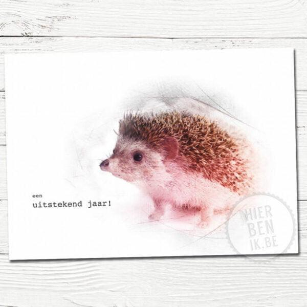 Leuke kerstkaarten | egel | Indie | foto | tekenen | dieren | gezin | grafisch | design | xmas | cards
