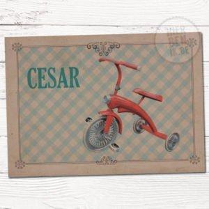 geboortekaartje retro motief vintage fietsje