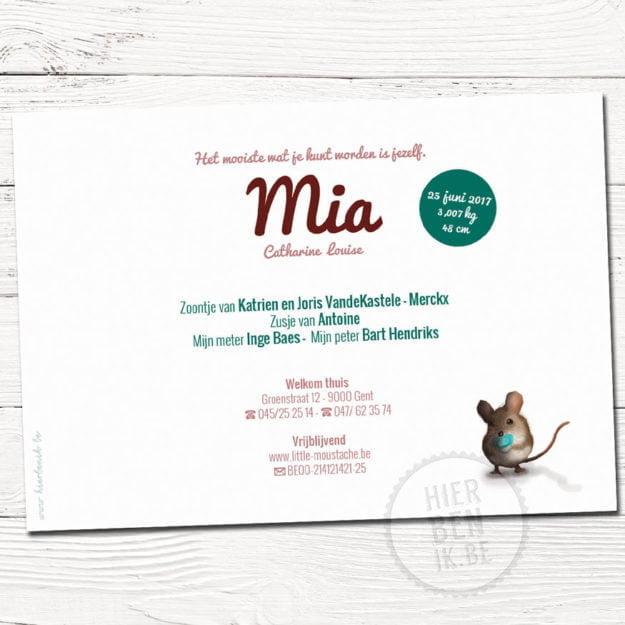 Geboortekaartje Mia met familie muisjes is een getekend kaartje