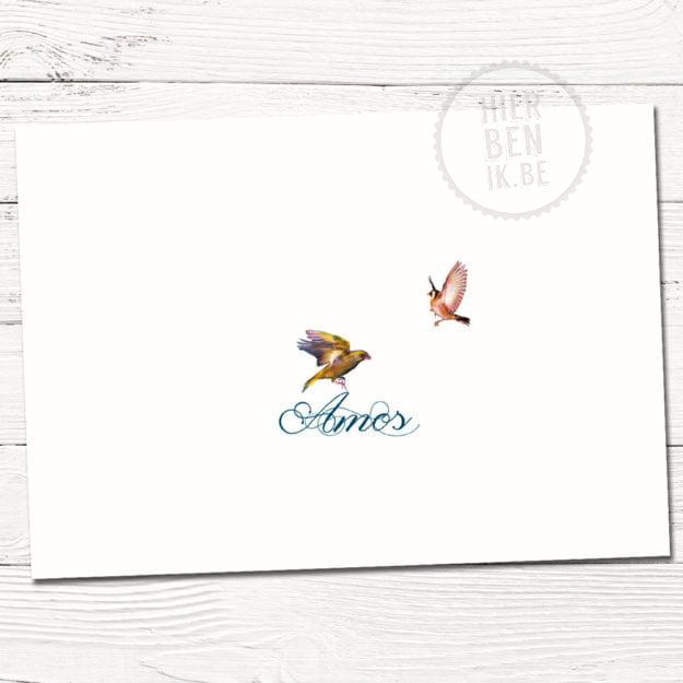 klassiek geboortekaartje Amos met vogeltjes