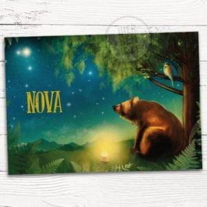 Geboortekaartje met getekende beer in landschap met sterrenhemel